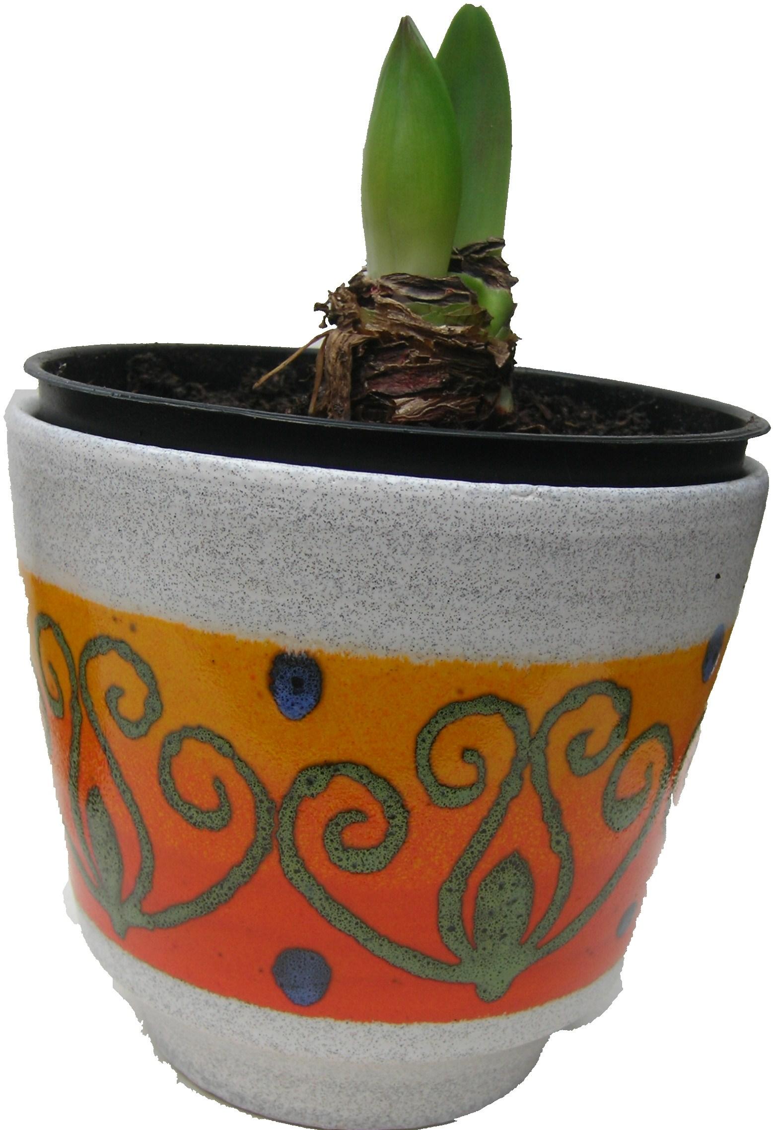 Amaryllis west german plant pot 2 pots and pots for Pot amaryllis