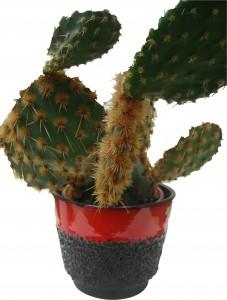 Cacti West German Plant Pot Roth Fat Lava Jopeko