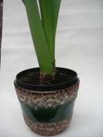 Jopeko West German Plant Pot