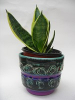 Spara Keramik Plant Pot West German Cacti