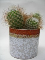 Roth Plant Pot West German Pottery