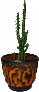 Orange Fat Lava Plant Pot with Cactus